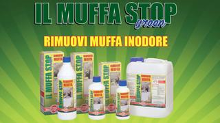 """Il Muffa Stop"", l'antimuffa inodore"